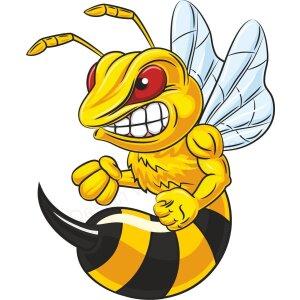 Böse Biene Aufkleber, Autoaufkleber Hornisse,Wespe